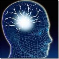 brain001_thumb